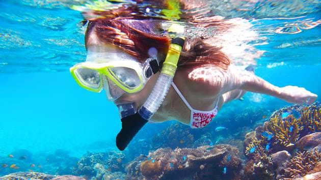 snorkeling_trip_1280x720_for_navi_web